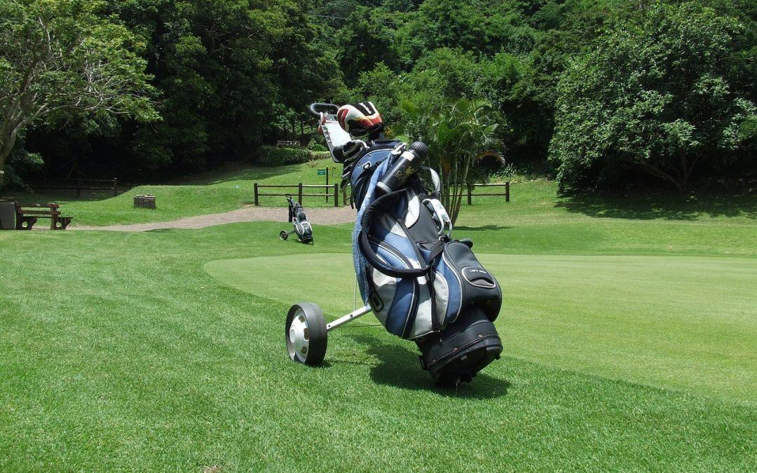 chariot électrique de golf